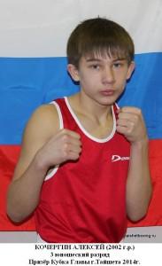 Кочергин Алексей