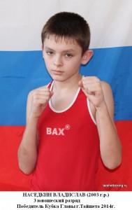 Наседкин Владислав