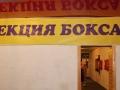 Секция бокса в г.Бирюсинск